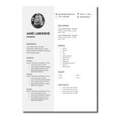 Originalus CV